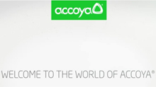 Accoya Video
